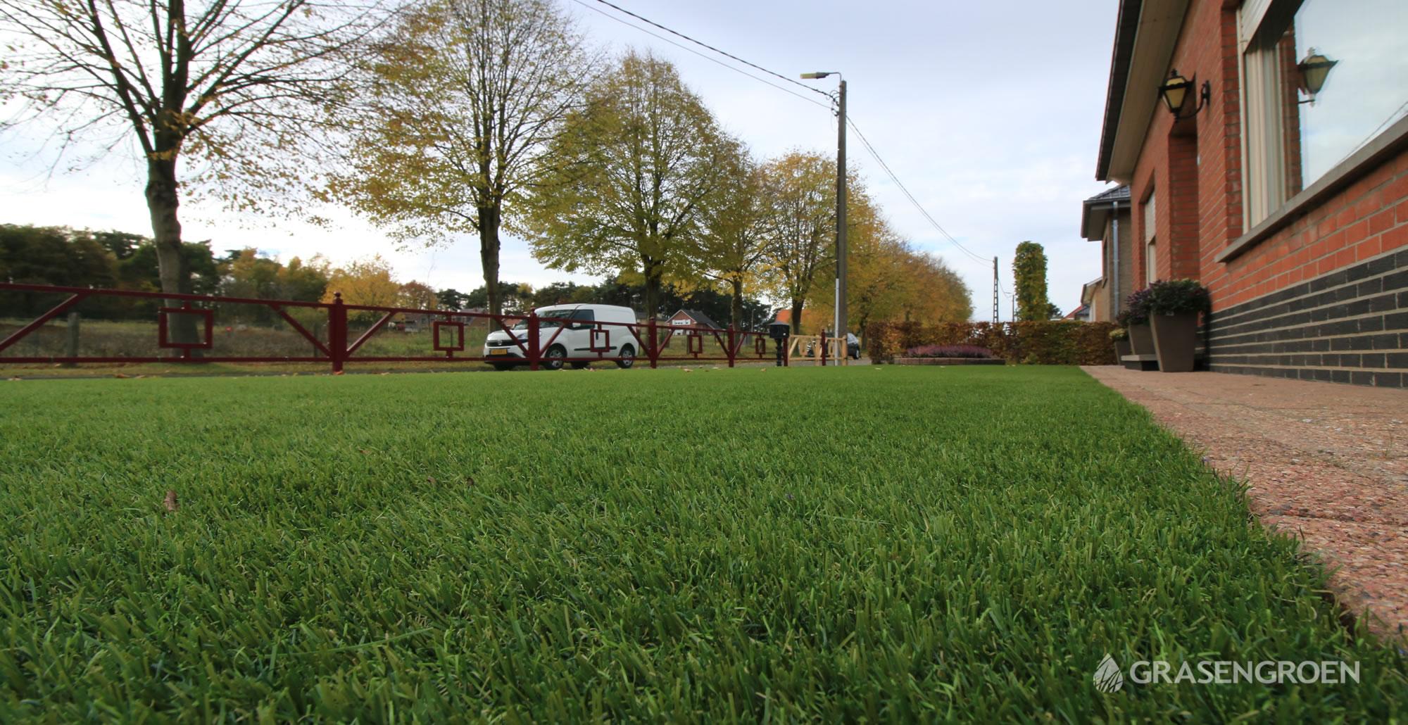 Kunstgrasleggensintjorisweert12 • Gras en Groen Kunstgras