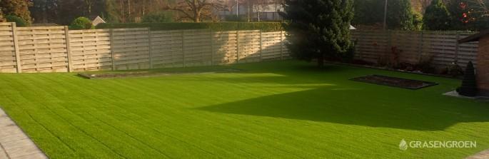 Kunstgrasleggenwuustwezel1 • Gras en Groen Kunstgras
