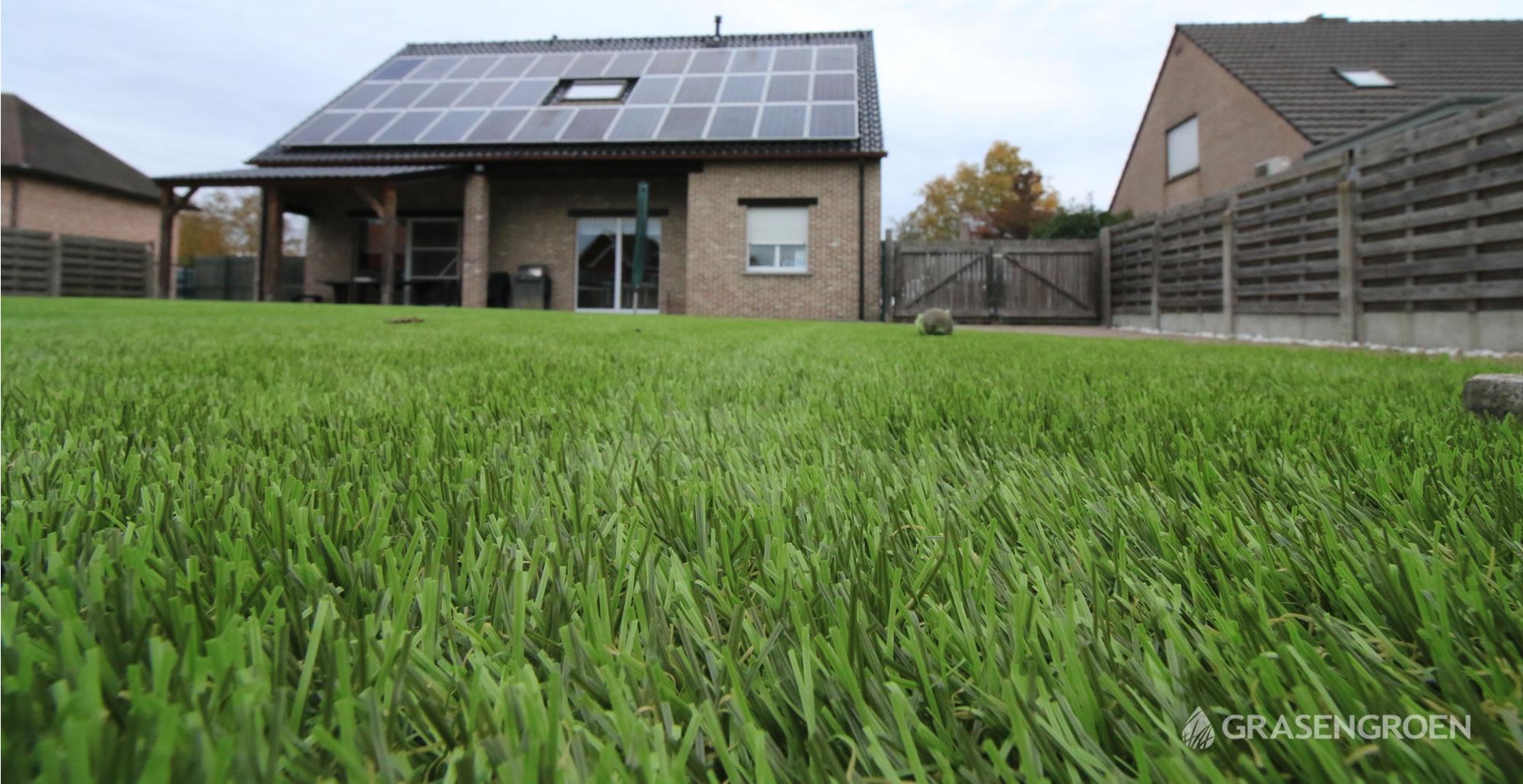 Kunstgrasleggenzelem11 • Gras en Groen Kunstgras
